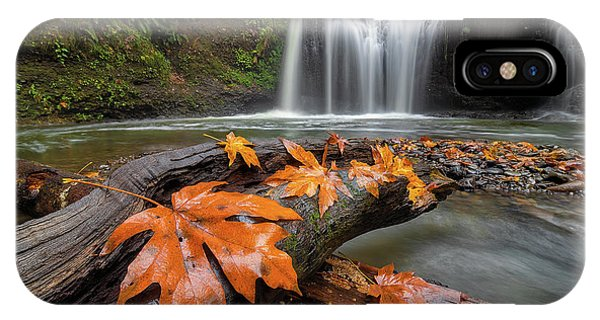 Maple Leaves On Tree Log At Hidden Falls IPhone Case