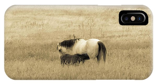 Mare And Foal  IPhone Case