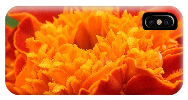 IPhone Case featuring the photograph Marigold Center by William Selander