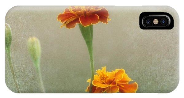 Close Focus Floral iPhone Case - Marigold Fancy by Kim Hojnacki