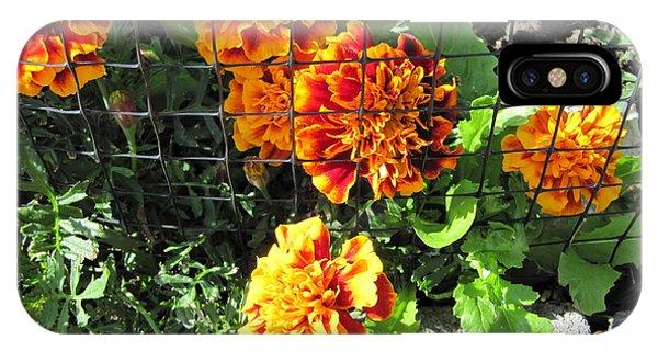 Marigolds In Prison IPhone Case