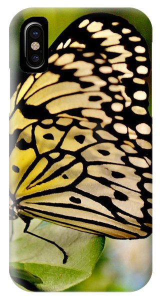 Mariposa Butterfly IPhone Case