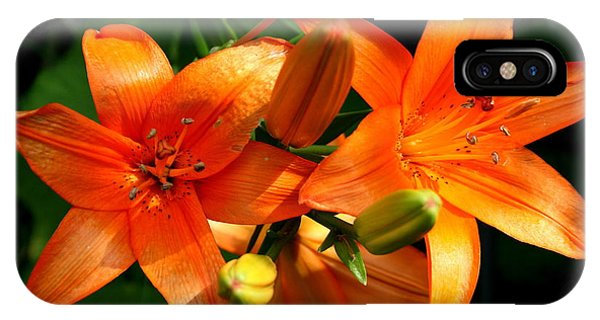 Marmalade Lilies IPhone Case