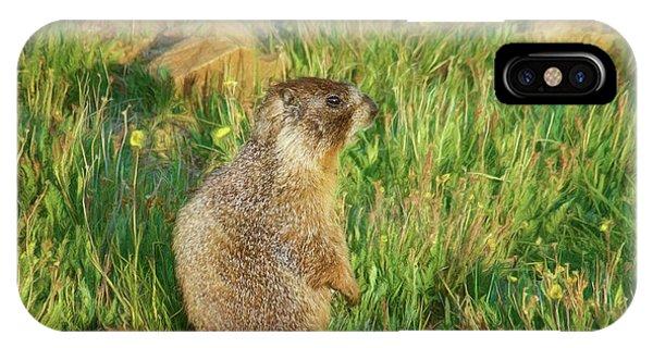 Rocky Mountain Np iPhone Case - Marmot by Nikolyn McDonald