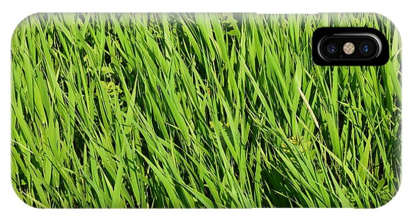 Marsh Grasses IPhone Case