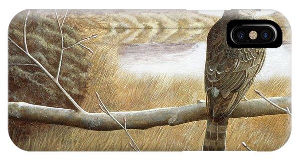 Marsh Hawk IPhone Case