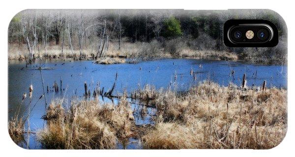 Marsh In Spring IPhone Case