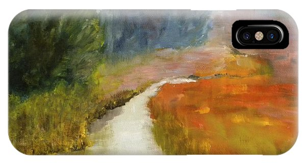 Marshes Of New England IPhone Case