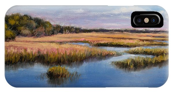 Marshland In Florida IPhone Case