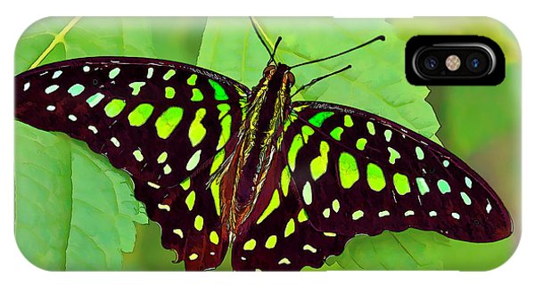 Marvelous Malachite Butterfly 2 IPhone Case