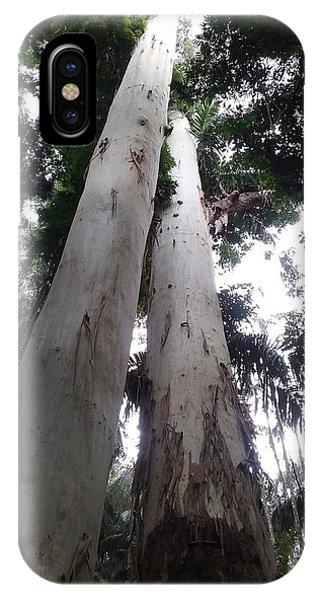 Mary Cairncross Rainforest  IPhone Case