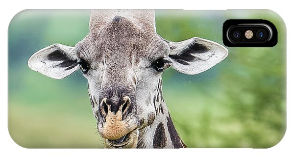 Giraffe iPhone Case - Masai Giraffe Portrait by Morris Finkelstein