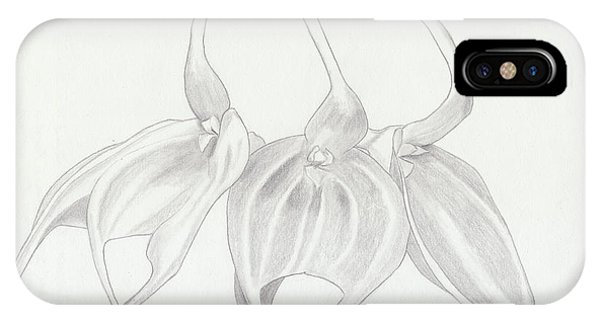 Masdevalia Tovarensis Orchid IPhone Case