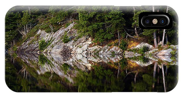 Massasauga Park Reflection IPhone Case