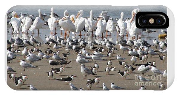Matagorda Beach Sea Birds IPhone Case