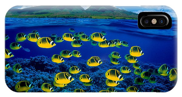 Maui Butterflyfish IPhone Case