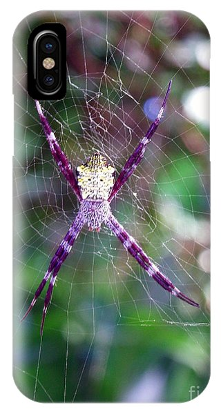 Maui Orbweaver/garden Spider IPhone Case