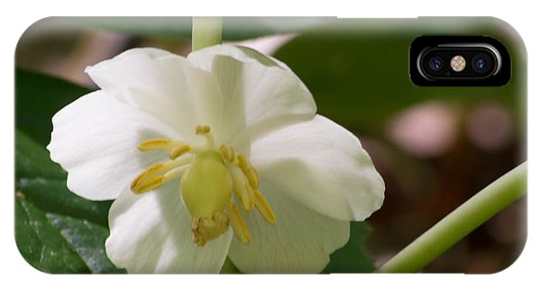 May-apple Blossom IPhone Case
