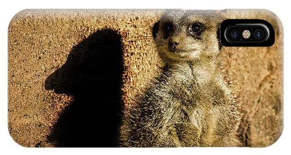 Meerkat iPhone Case - Me And My Shadow by Martin Newman