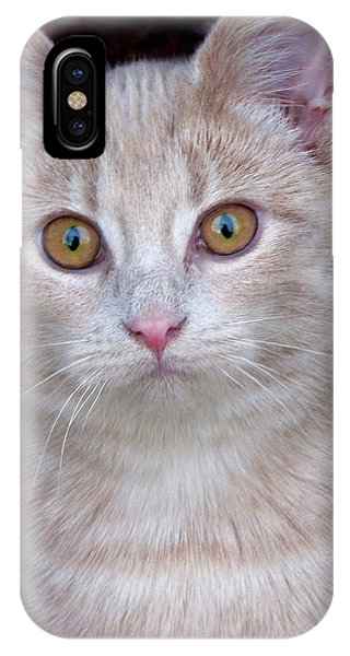 Me- No, It Was The Dog IPhone Case