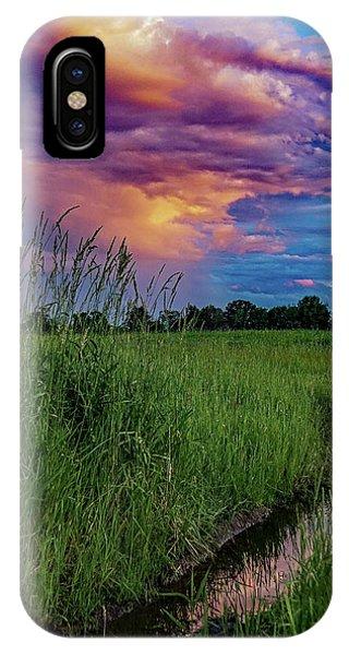 Meadow Lark IPhone Case