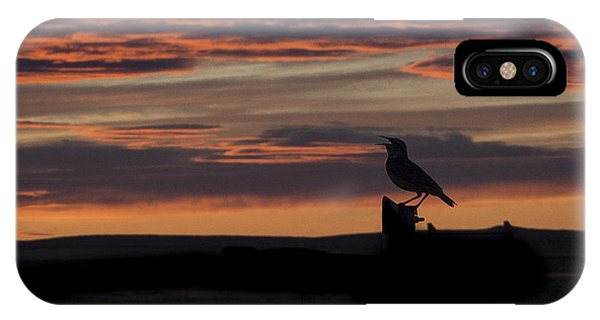 Meadow Lark's Salute To The Sunset IPhone Case