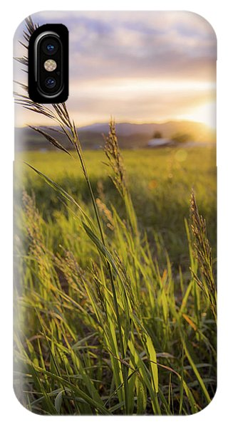 American West iPhone Case - Meadow Light by Chad Dutson