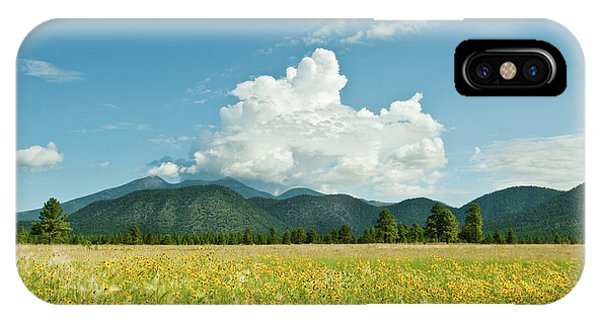 Meadow Of Sunflowers And The San Francisco Peaks IPhone Case