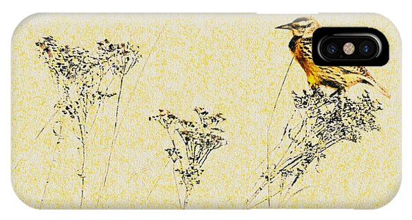 Meadowlark In Kansas Prairie 1 IPhone Case