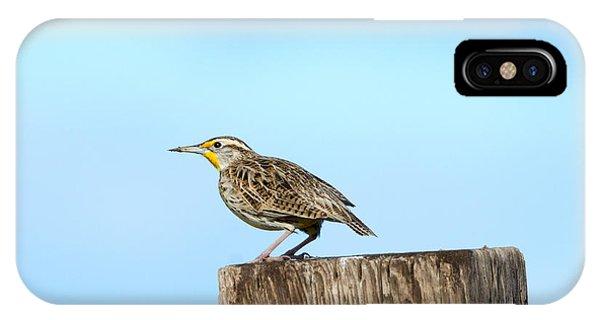 Meadowlark Roost IPhone Case