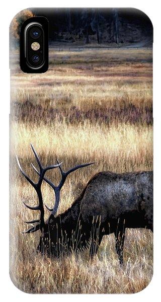 Meadows Of Horseshoe Park  IPhone Case