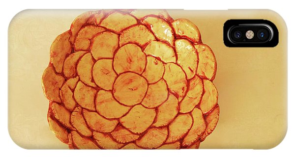 Medium Patches Bowl1 IPhone Case
