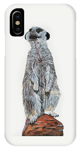 iPhone Case - Meer Curiosity by Lee Wolf Winter