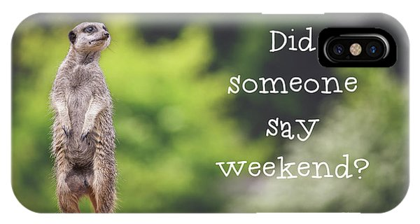 Meerkat iPhone Case - Meerkat Asking If It's The Weekend Yet by Jane Rix
