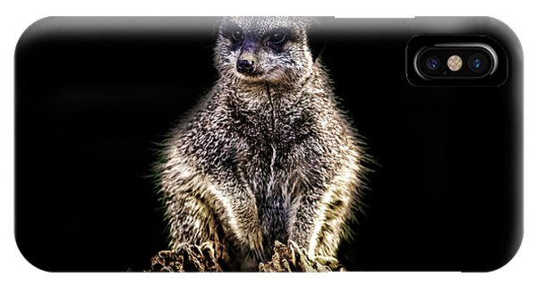 Adapted iPhone Case - Meerkat Lookout by Martin Newman