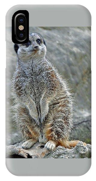 Meerkat Poses IPhone Case