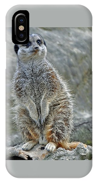 Meerkat Poses IPhone Case