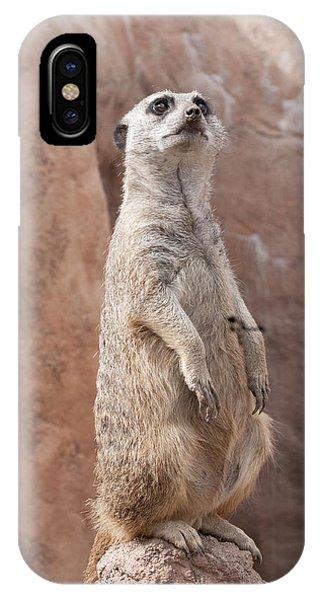 Meerkat Sentry 2 IPhone Case