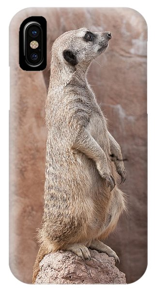 Meerkat Sentry 3 IPhone Case