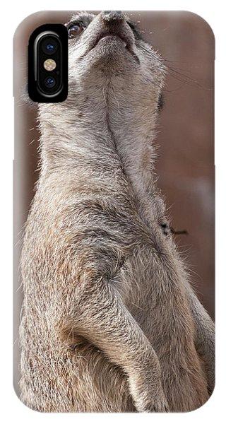 Meerkat Sentry 4 IPhone Case