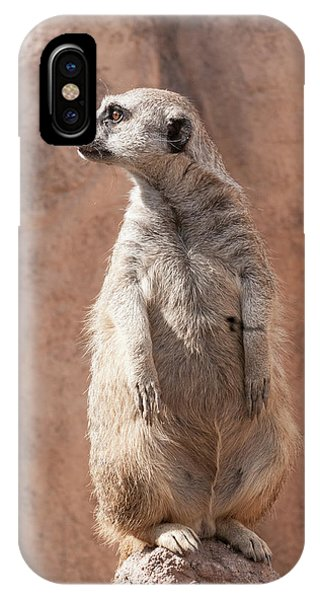 Meerkat Sentry 5 IPhone Case