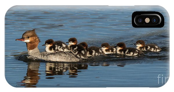 Meet The Mergansers IPhone Case