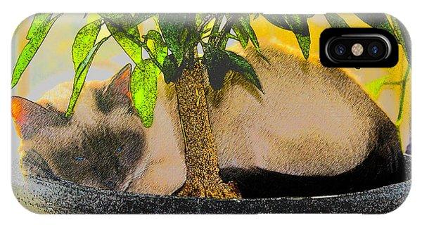 Meezer Tree IPhone Case