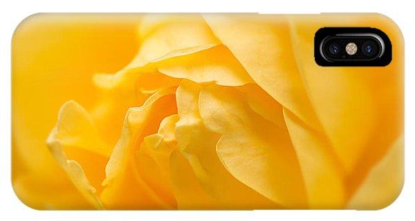 Mellow Yellow Rose IPhone Case