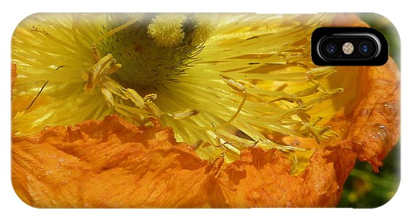 Mellow Yellow - Signed IPhone Case