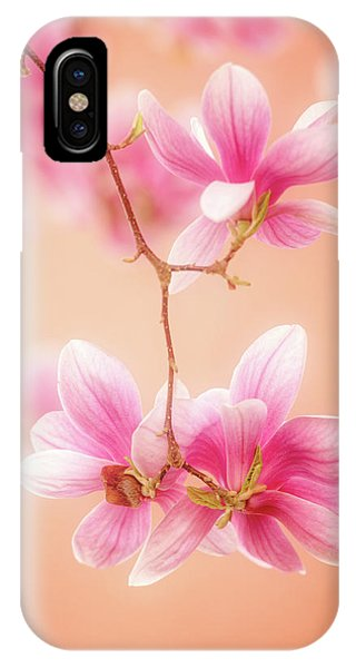Melodies Of Spring  IPhone Case