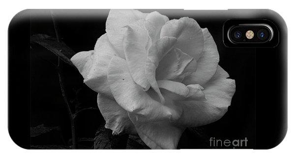Mendocino Rose01 IPhone Case