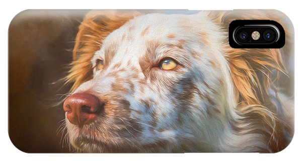 Merle Border Collie IPhone Case