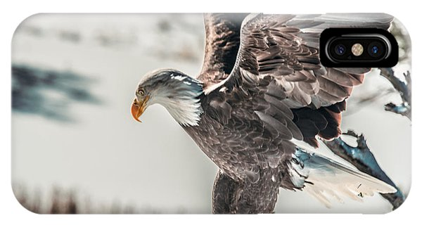 Metallic Bald Eagle  IPhone Case
