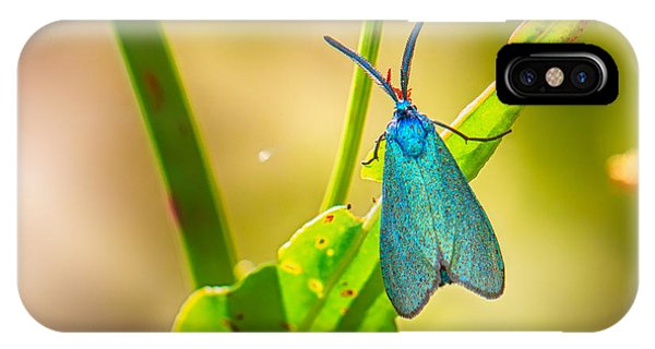 Metallic Forester Moth IPhone Case